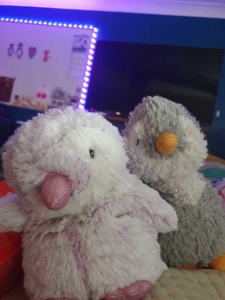 Nicky, a very fluffy lilac and white penguin soft toy with pink sparkly beak and feet. Behind them is Isabella, a less fluffy grey and white penguin with an orange beak and feet.